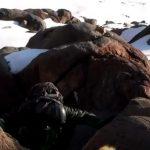 5 consejos útiles para escalada en terreno mixto